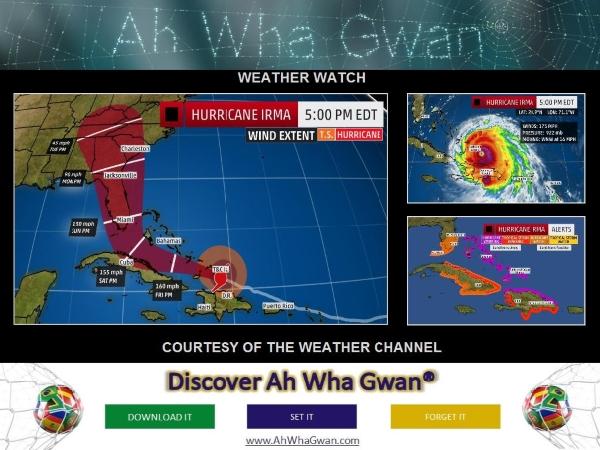 Discover Ah Wha Gwan®
